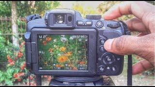 Full Manual Mode Nikon Coolpix P1000 B700 P900 Tutorial 2018