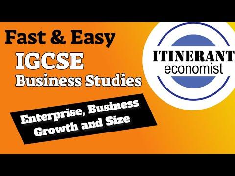 IGCSE Business studies 0450 - 1.3 - Enterprise, business growth and size