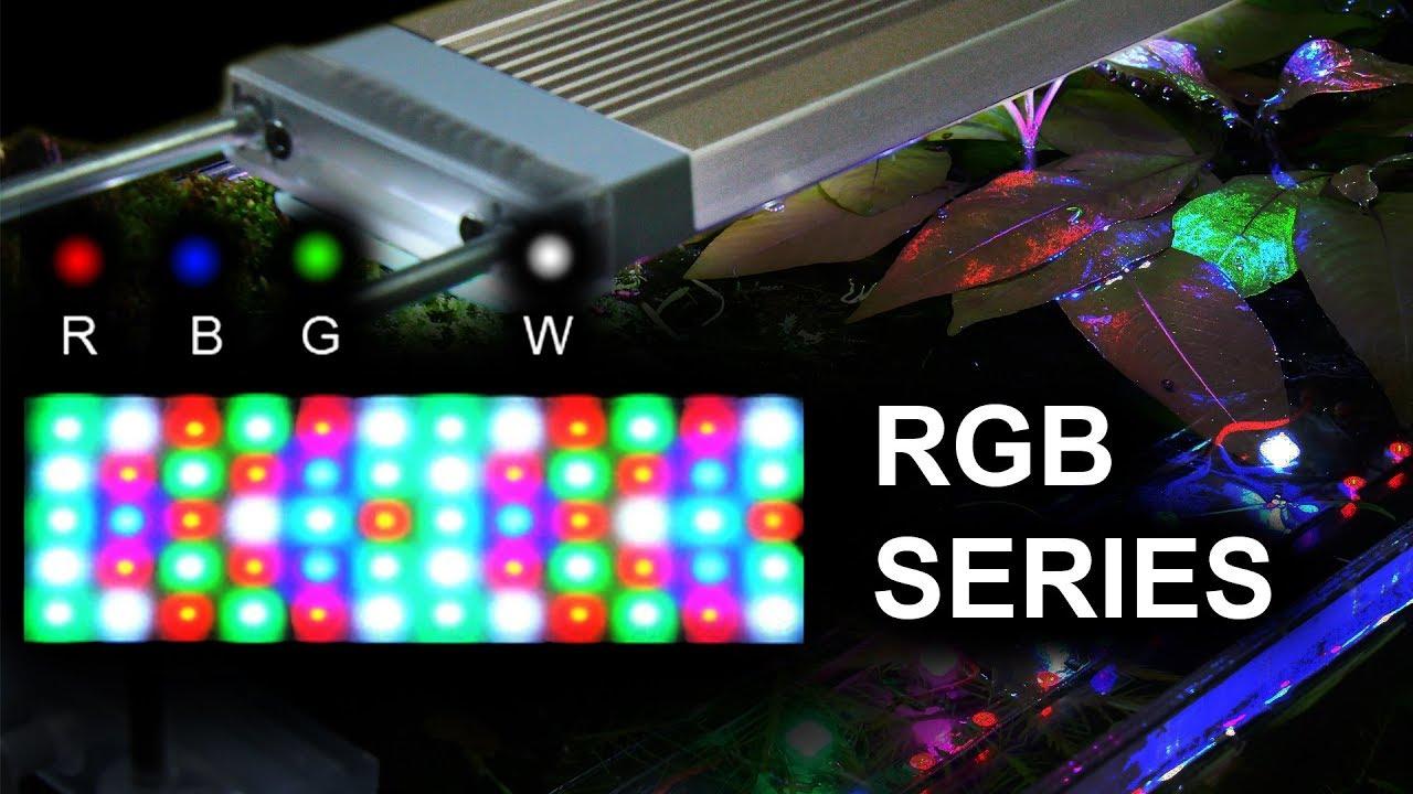 Meglio Neon O Led come funzionano le plafoniere led rgb (chihiros, twinstar) in acquario?