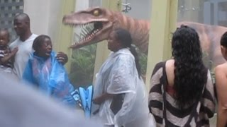 Raptor Encounter at Universal Studios (Scary!)