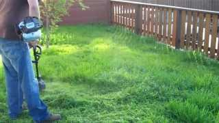 Using Ryobi 25 cc 2-Cycle Gas String Trimmer on Long Grass
