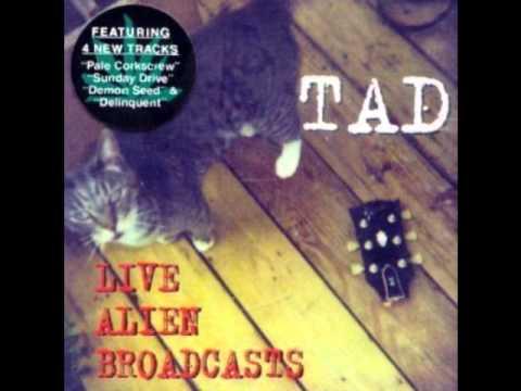 TAD (Paregoric) Live