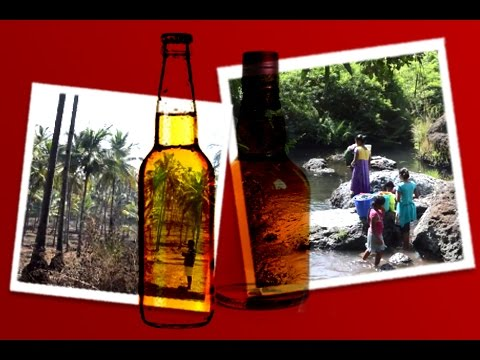 The Green Guardians of Goa: A Citizens' Movement Against a brewery