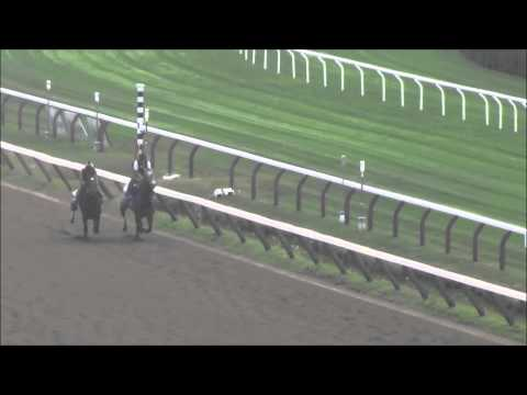 Court Savvy Breezes in Saratoga August 20th, 2015