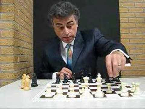 GM Yasser Seirawan Introduces Seirawan Chess - YouTube
