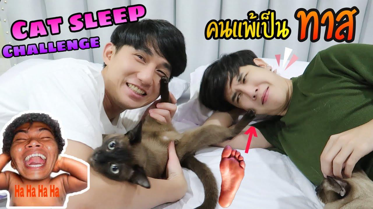 "Cat Sleep Challenge คนแพ้ต้องยอมเป็น "" ทาส "" งานนี้ใครจะโดน ?! | Fararim Story"