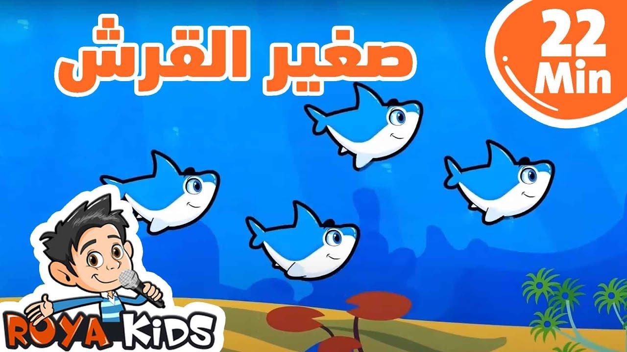 صغير القرش ومجموعة مميزة من آغاني أطفال رؤيا 22 دقيقة