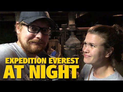 Riding EXPEDITION EVEREST AT NIGHT! | Animal Kingdom