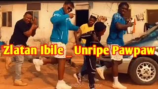 Zlatan Ibile _ Unripe Pawpaw (Dance) by Blessedson,Tetrisnation, and Reekadomarshall