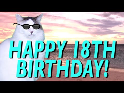 hqdefault happy 18th birthday! epic cat happy birthday song youtube