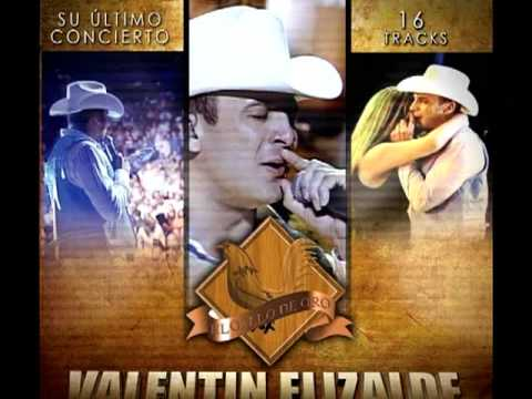 Mi Gusto Es - Valentin Elizalde
