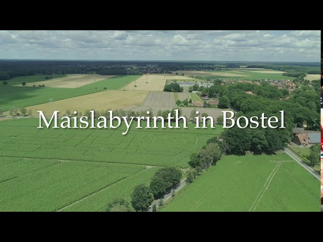 Maislabyrinth in Bostel bei Celle