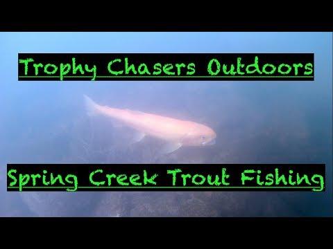Spring Creek Trout Fishing - Bellefonte, PA