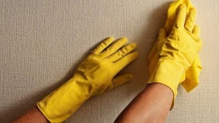 видео Пятна на обоях появились после поклейки: темные, жирные, желтые (как убрать, удалить, вывести и замаскировать)