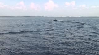Копия видео Лодка стеклопластик 3.3метра под Suzuki DF 5 (1).(Лодка стеклопластиковая.длина 3.30 ширина 1.20 метра вес 50 кг., 2015-08-08T08:48:32.000Z)