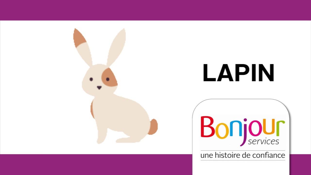 Populaire Les animaux en langue des signes (LSF) Bonjour Services - YouTube YZ91
