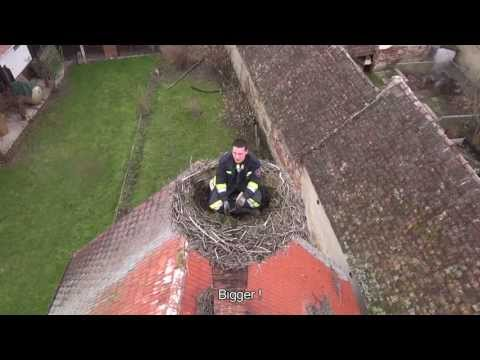 Firefighters clean stork nests
