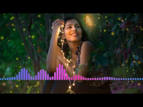✊RingTone✊ New Hindi Ringtone || न्यू हिंदी रिंगटोन ||न्यू हिंदी रिंगटोन Mp3 | Mr. Anil Kumar