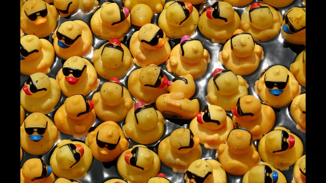 Rubber Duck Derby hits Chicago River - YouTube