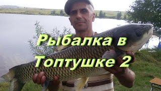 Рыбалка в Топтушке - 2 (Алтайский край)