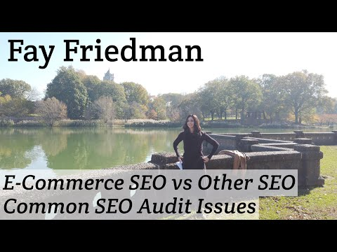 Fay Friedman On E-Commerce SEO vs Other SEO & Common SEO Audit Issues #114 - YouTube
