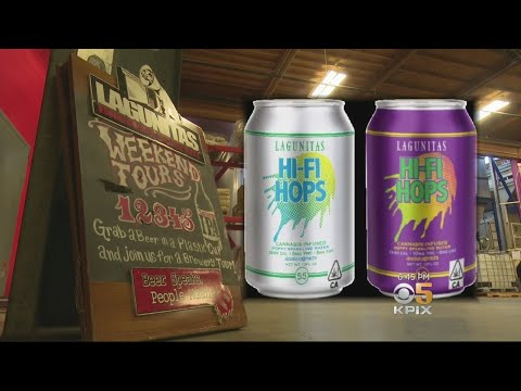 Lagunitas Introduces Cannabis-Infused Hop Water - YouTube