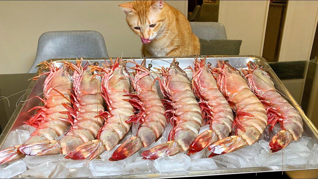 How to cook huge shrimps!如何料理巨大蝦子!