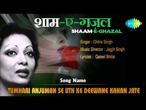 Tumhari Anjuman Se Uth Ke Deewane Kahan Jate | Shaam-E-Ghazal | Chitra Singh
