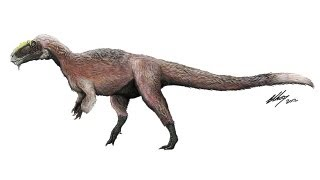 Feathered T-Rex-like Dinosaur Discovered is Largest Ever Found