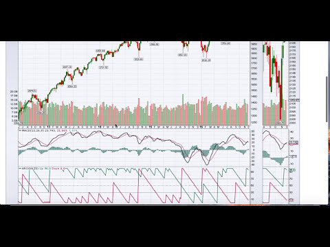 Bullish and Bears Meaning When Trading Stocks