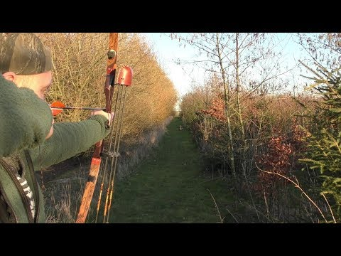Archery Practice - The Point On Distance