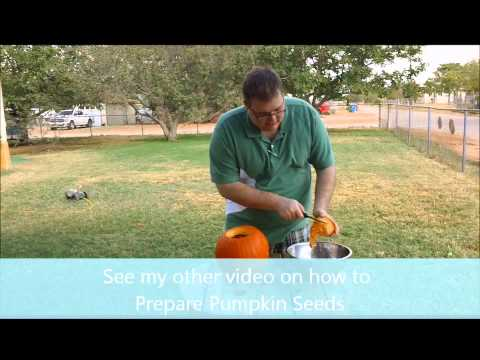 How to clean the inside of a pumpkin.  EASY