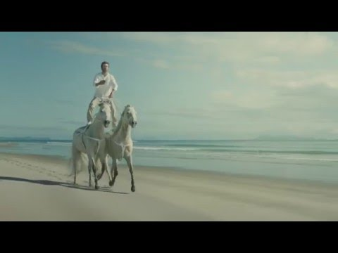 Horses - Bingle Car Insurance [Commercial 2016]