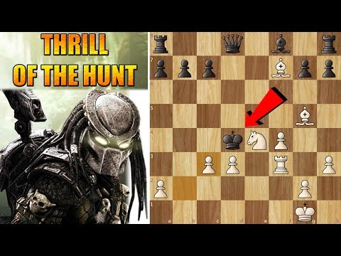 The Thrill of the Hunt! An amazing king-hunt game (Modern Sc