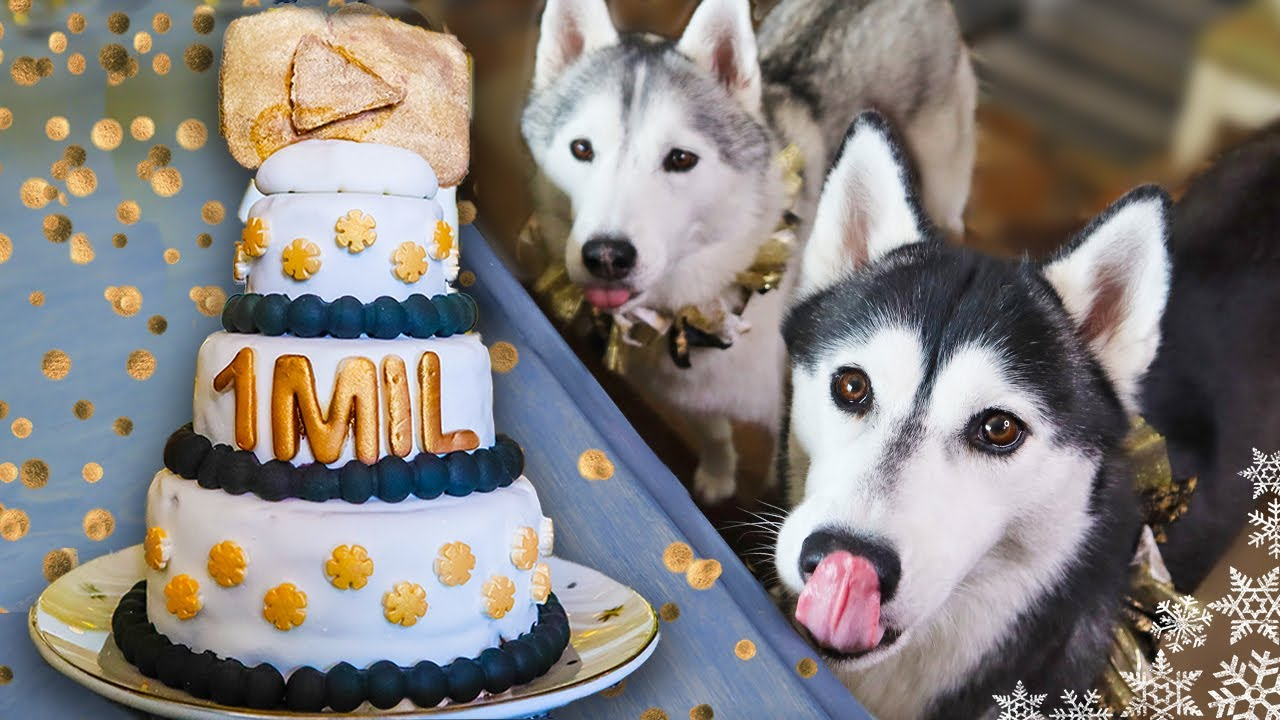 ONE MILLION Subscriber Cake for the Dogs | DIY Dog Treats