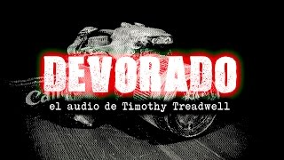 DEVORADO:  El audio de Timothy Treadwell