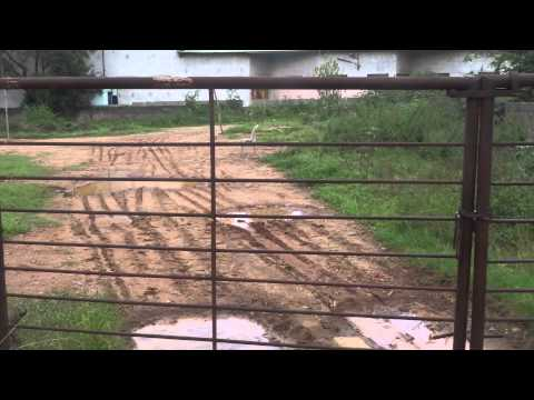 4000sqft Land For Sale @240L in Domain Layout, Behind Graphite India, Bangalore Refind:11162