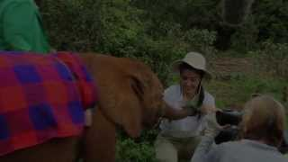 Li Bingbing visits the David Sheldrick Wildlife Trust (06 May 2013) | Sheldrick Trust