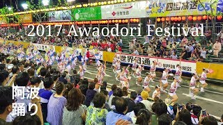 2017 徳島県 阿波踊りの動画です。 踊っているのは有名連『葵連』 撮影...
