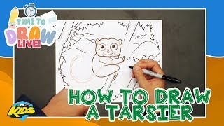 How to Draw a Tarsier | Time to Draw LIVE