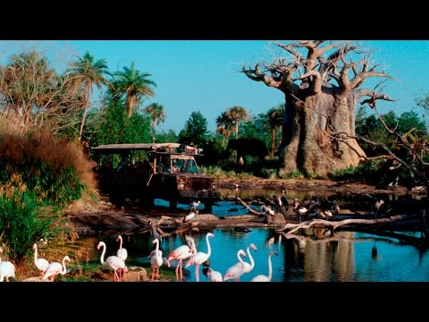 [HD] Kilimanjaro Safari at Disney's Animal Kingdom Walt Disney World POV Beautiful! 1080p 60fps