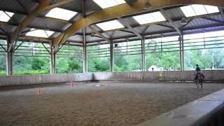 Poney club de torcy (mon année d'équitation)