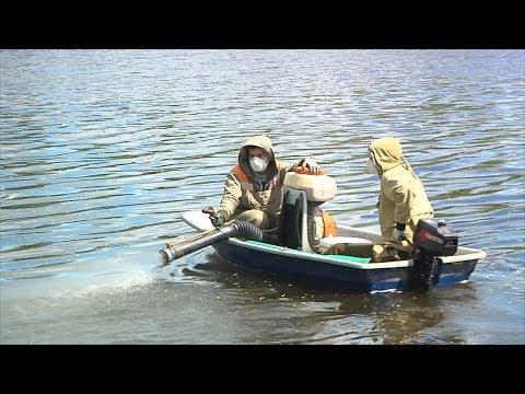 UTV. В Башкирии продолжается борьба с комарами. Люди пока выигрывают