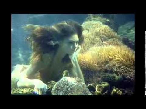 H2o pl tzlich meerjungfrau bilder youtube for Youtube h2o