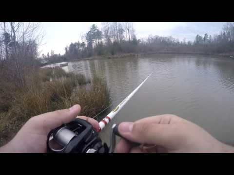 Harrison Lake & Local Pond Fishing