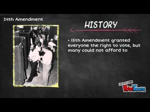 24th Amendment Project