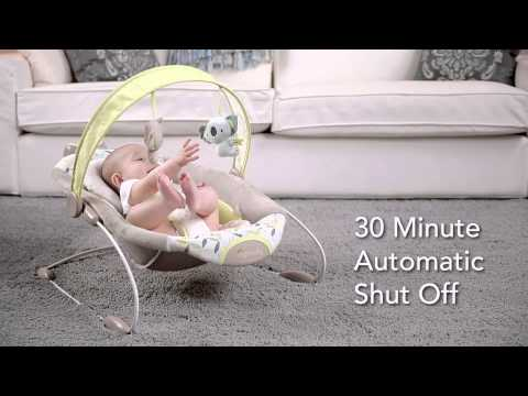 Get to Know the Features of the SmartBounce Automatic Bouncer from Ingenuity
