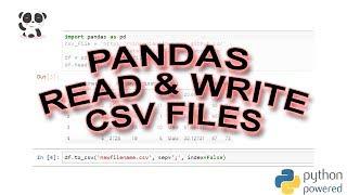 How to Use Pandas read_csv & to_csv