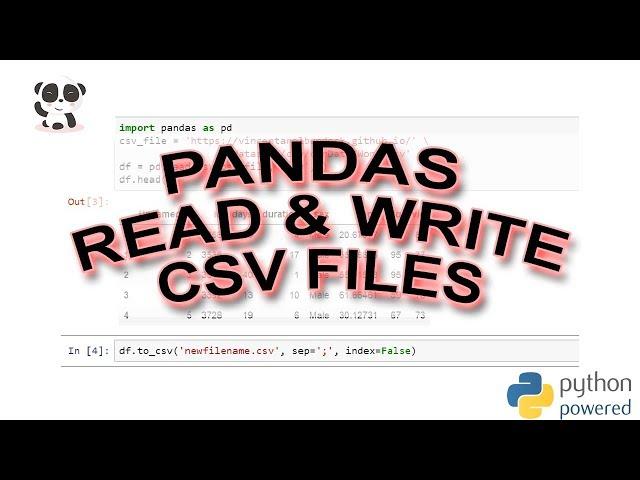 A Basic Pandas Dataframe Tutorial for Beginners - Erik Marsja