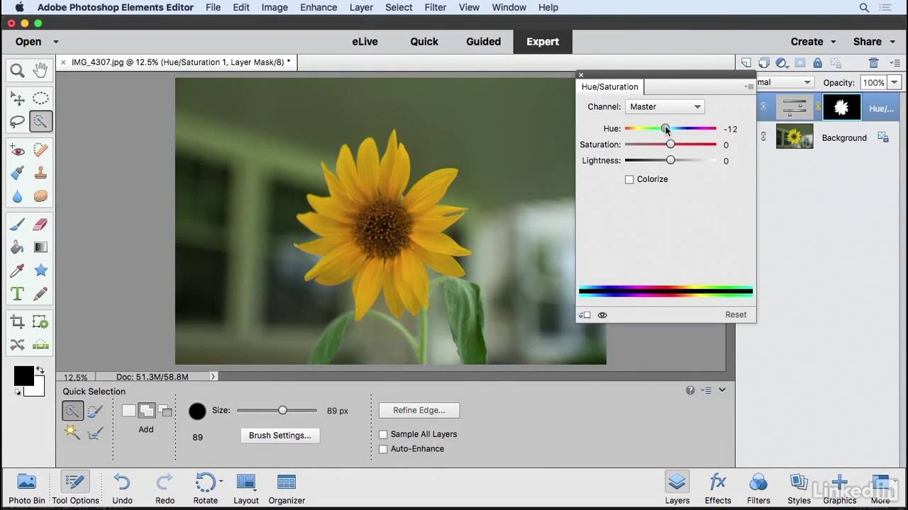 Learning Photoshop Selections And The Selection Tools Learning Photoshop Elements 15 Lynda From Linkedin